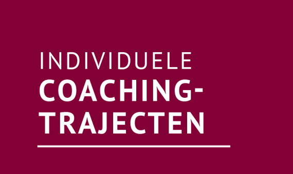 Individuele coachtrajecten op genoemde gebieden